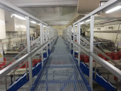 Blue Access Platforms with stairs over conveyors