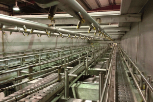 Inside a Container Pasteurising and Cleaning Tunnel