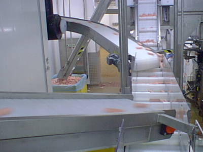 Transfer Conveyors for Sausages